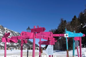 pink and blue road signs near trees